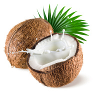 coconut-with-milk-splash-and-leaf-on-white-background