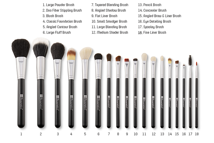 Makeup brushes uses for beginners